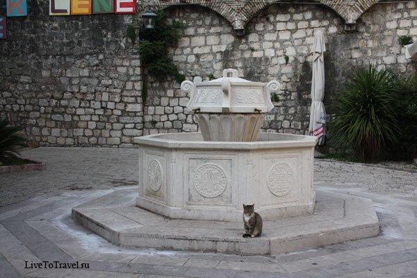6355-фонтан-Котор