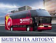 7-avtobus-bilet